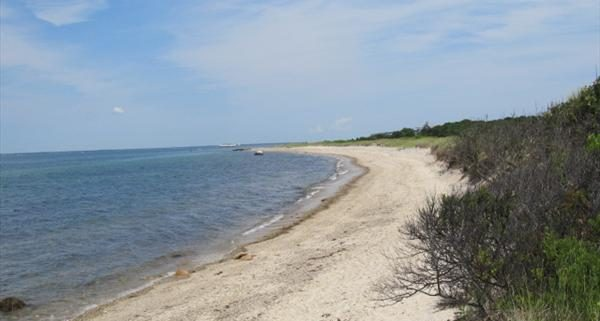 Martha's Vineyard Beach